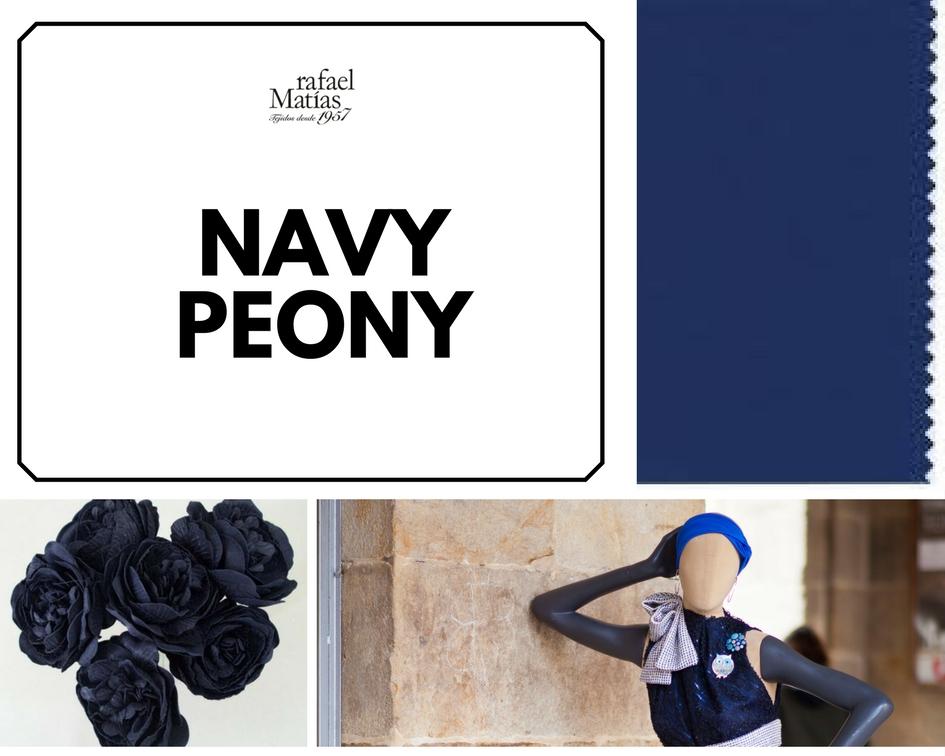 color-tendencia-navy-peony-rafael-matias-tejidos