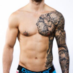 Boxer caballero de Discover